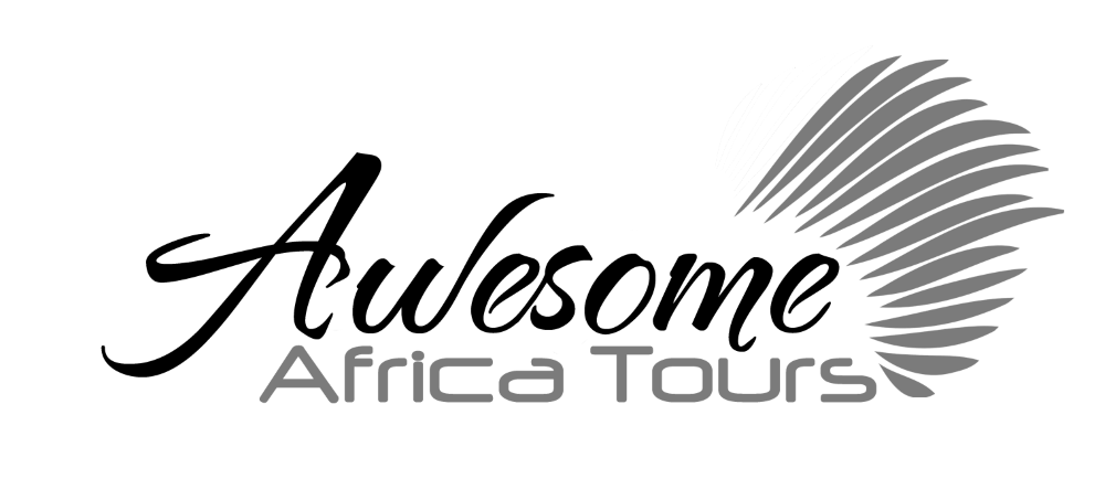 Awesome Africa Tours